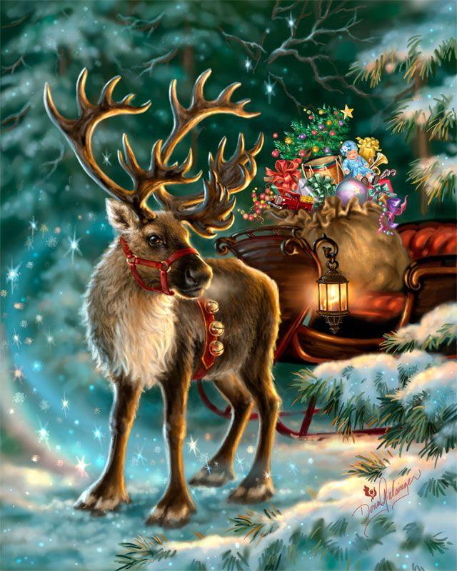 Олень рождественский