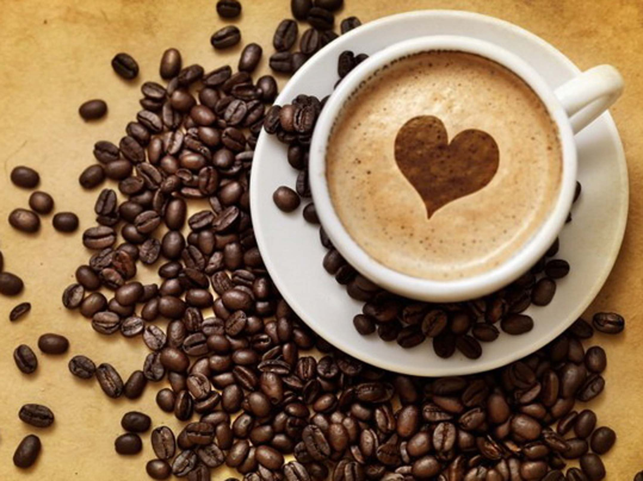 ассортимент моделей, фото с чашкой кофе ЛНР задержан